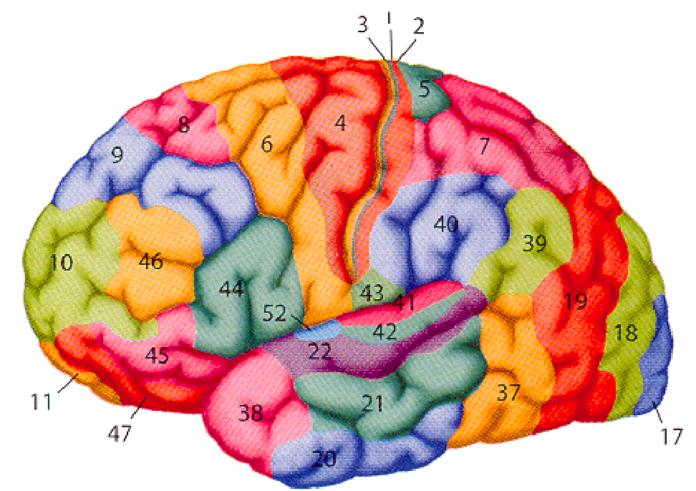 διταραχές οπτικής αντίληψης
