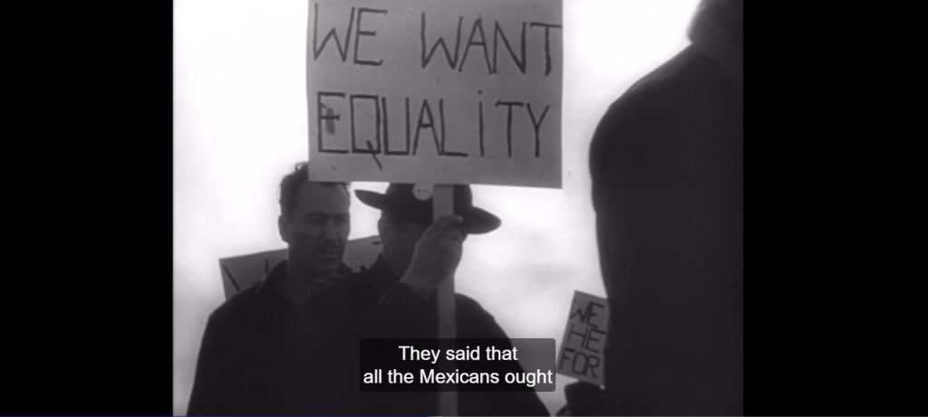 Equality- Salt of the Earth